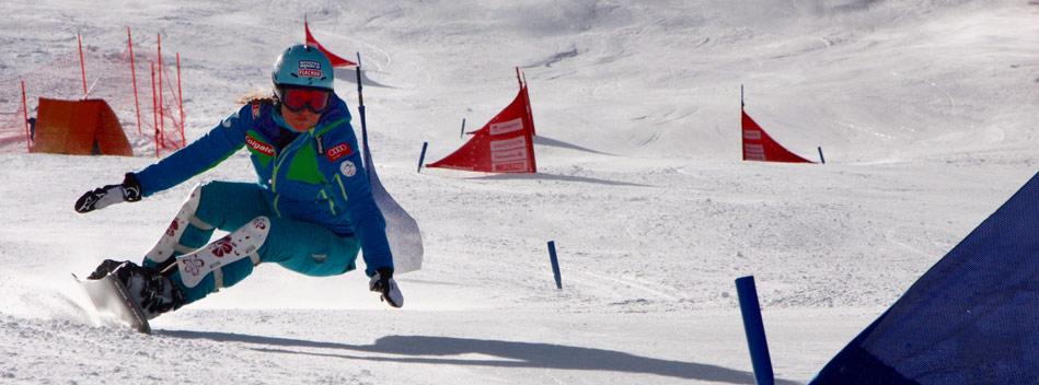 skifliegen spielen
